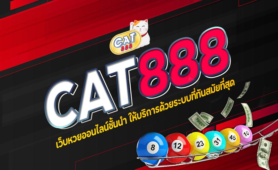 วันนี้รวย cat888